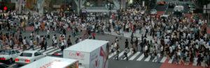 Tokyo's Concrete Jungle Gets A Little Greener