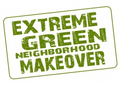 Extreme Green Neighborhood Makeover from CarbonfreeDC
