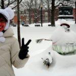 SeeClickFix on TheCityFix DC: Become a Snow Helper!