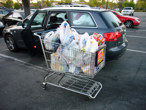 Shopping carts make us buy more stuff than we can carry home. Photo by foreverdigital.