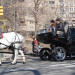 Friday Fun: Horse-Drawn Hummers!