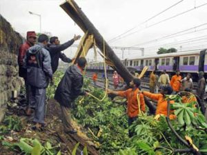 A tree falls on the tracks near Dadar station due to heavy rain. Photo via Mid Day.