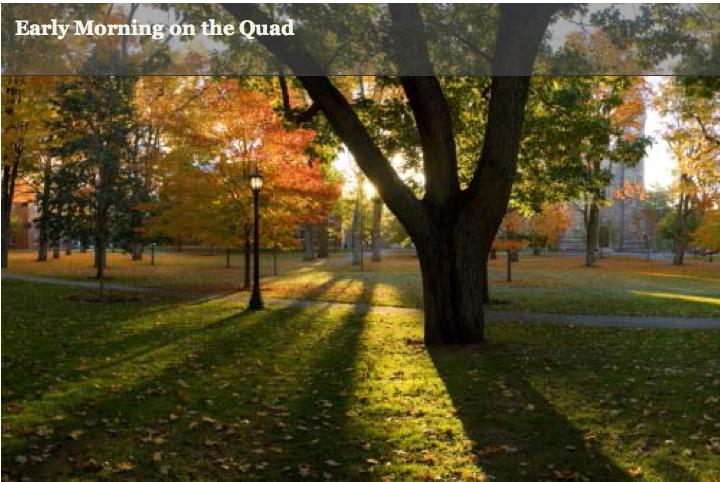 The Bowdoin Quad. Photo from bowdoin.edu.