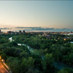 The urban forestry of Etobicoke, Toronto.  Photo by Sam Javanrouh.