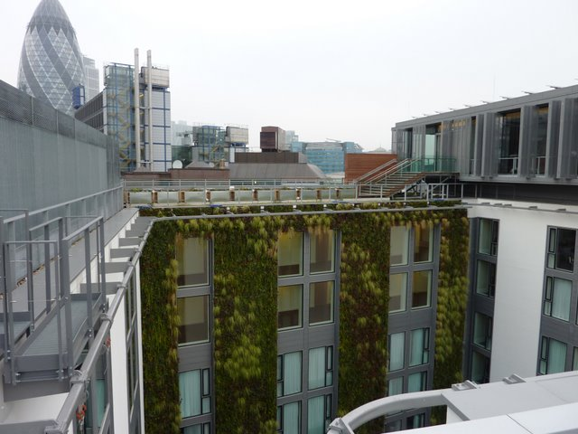 Europe's largest living wall was recently finished in London. Photo via Living Walls.