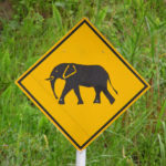 TheCityFix Picks: African Road Ecology, Vacuum Like Traffic, Incentivized Pollution, Greek Debt Yields Bikes