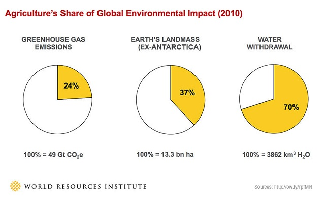 Agriculture's environmental impact