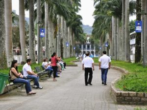 Joinville Brazil is a Leading Proponent of Urban Trees. Photo by Mariana Gil / WRI Brasil Sustainable Cities / Flickr