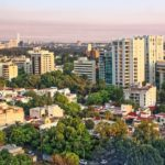 Protecting Forests Near and Far: Cities4Forests Launches at GCAS